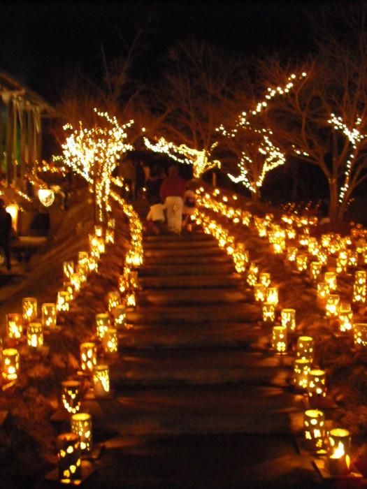約4000本の灯籠のイルミネーションで飾られた飛龍窯