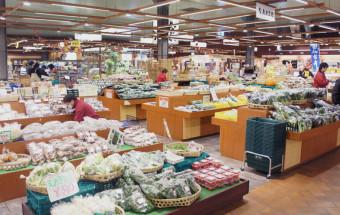 仙台場外市場 杜の市場