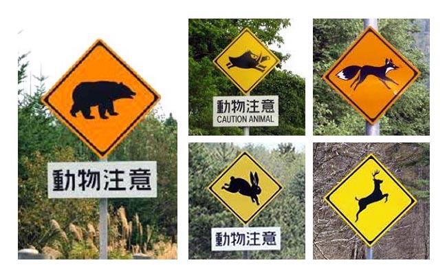 標識_動物