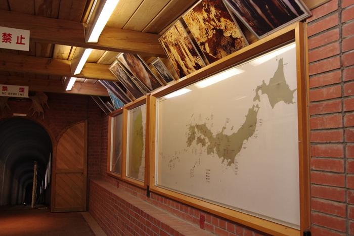龍泉新洞科学館入口