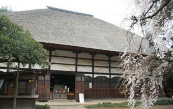 タヌキがいっぱい!「ぶんぶく茶釜」のお伽ばなしを生み出した「茂林寺」
