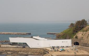 2,000匹のクラゲが浮遊する大水槽をはじめ、まるでクラゲのテーマパークのような「鶴岡市立加茂水族館」