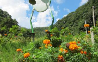 能登の山間に生まれた、まるで童話の世界のような小さな自然ふれあい施設『ケロンの小さな村』