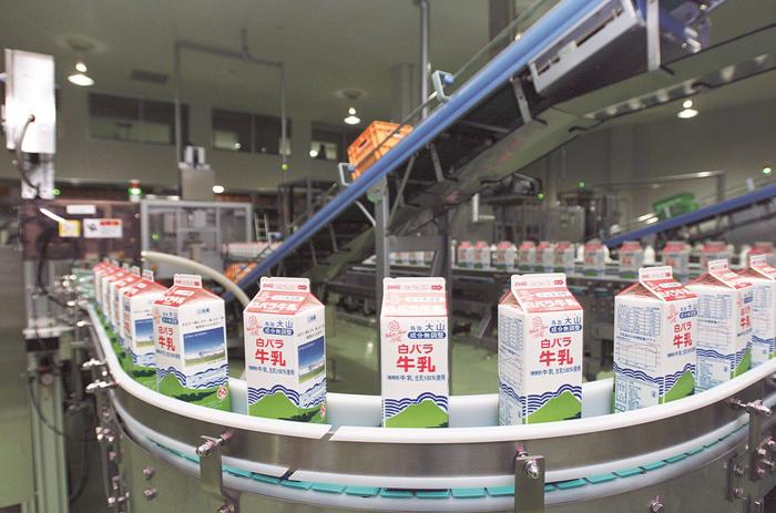 ④牛乳製造ライン