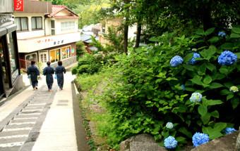 13種の温泉が楽しめる! 阿蘇の自然に囲まれた『黒川温泉』で、贅沢露天風呂巡り
