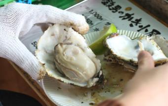 プリップリッの牡蠣をリーズナブルに食すなら、『ひろしまオイスターロード』のかき小屋へ!
