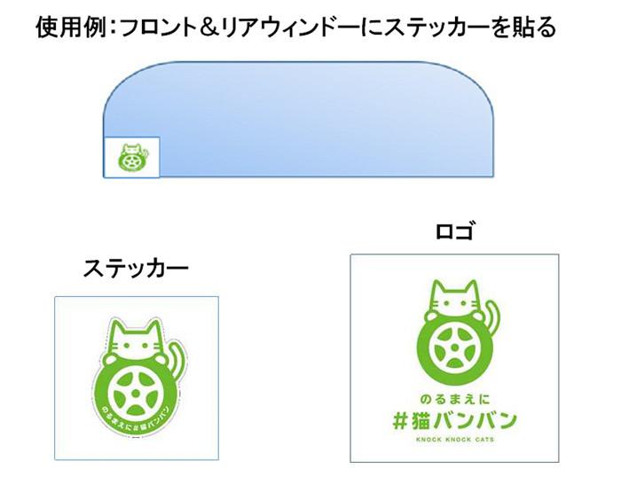 猫バンバン_画像6