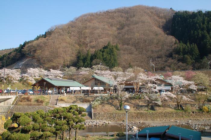 asigakubo