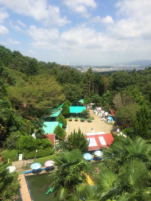 オレンジ園_1