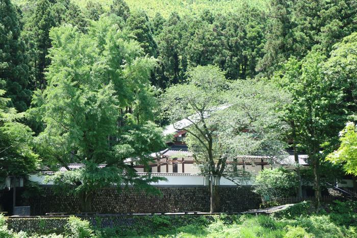 玉堂美術館6