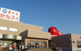 明太子の老舗『かねふく』が工場見学をエンターテイメントにアレンジ!面白くておいしい!『めんたいパーク大洗』