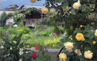 """小布施のもう一つの顔は""""花と庭の街""""。その文化を背景に2000(平成12)年から始まった、個人宅の庭を訪問者に公開するというユニークな試み『おぶせオープンガーデン』"""
