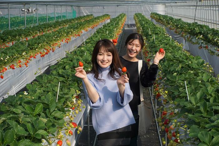 らいおん果実園5