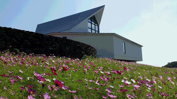 遠藤周作文学館 おすすめ画像 秋・遠藤先生がお好きだったコスモス