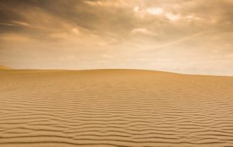 「これが砂なのか!」とびっくり!世界で唯一「砂」を素材にした砂像を展示する烏取砂丘の『砂の美術館』