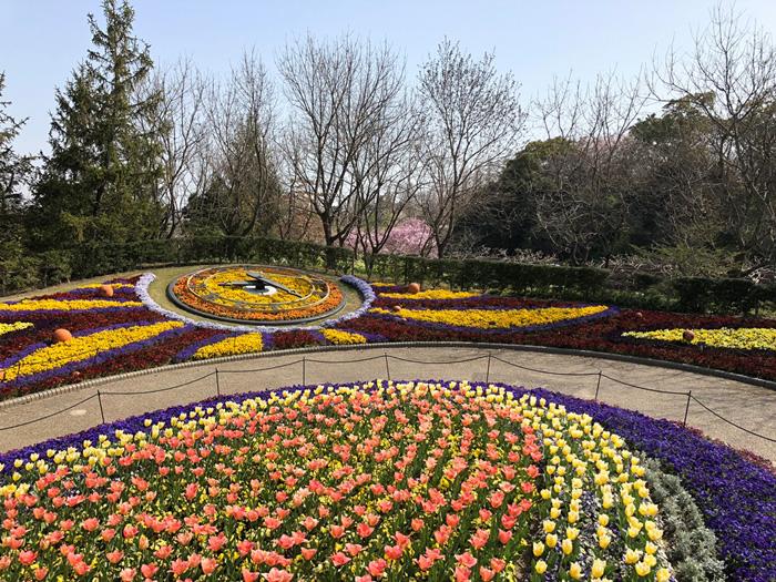 ファンタジーガーデン(春)