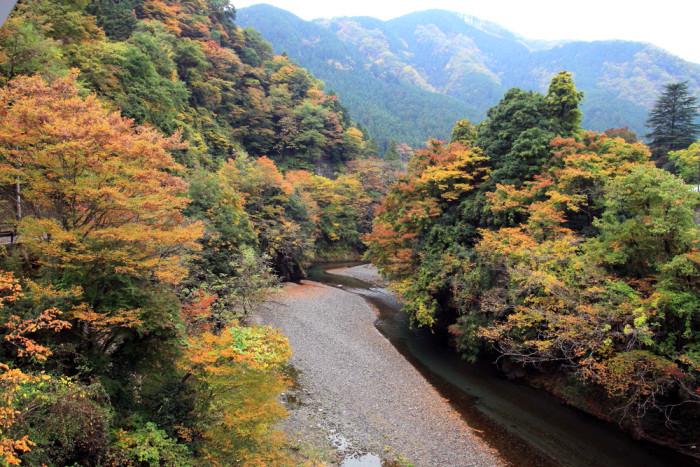 紅葉の秋川渓谷(新矢柄橋からの眺め)