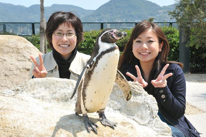 海響館 ペンギンと一緒に~ハイポーズ!