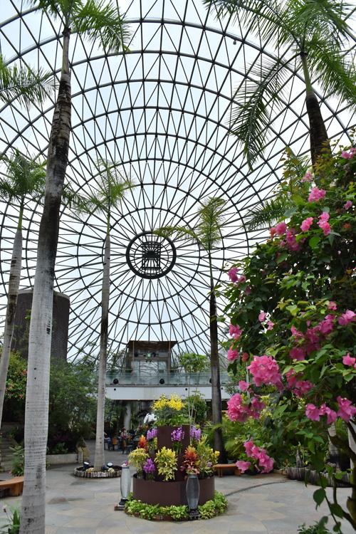 フラワードーム(年間通して熱帯植物を楽しめる)